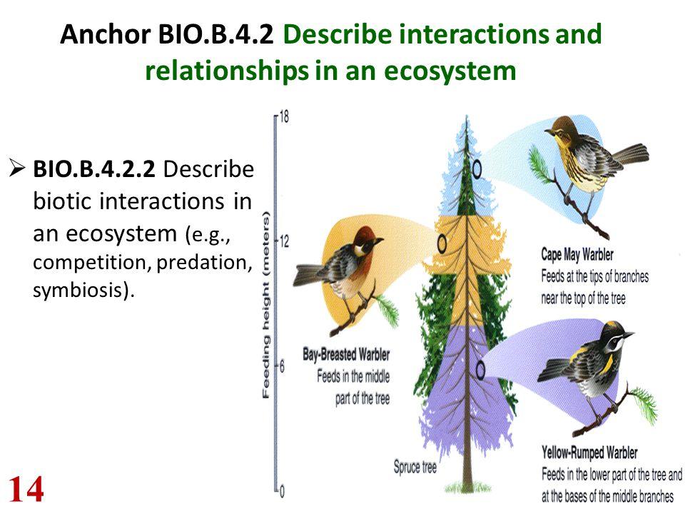 Anchor BIO.B.4.2 Describe interactions and relationships in an ecosystem  BIO.B.4.2.2 Describe biotic interactions in an ecosystem (e.g., competition