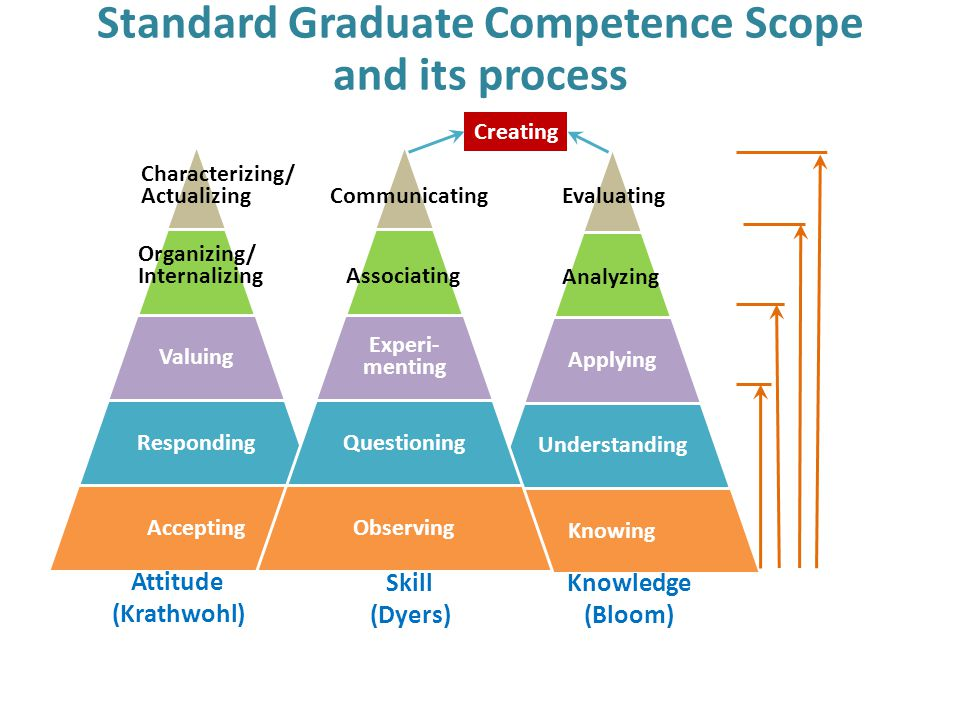 Standard Graduate Competence Scope and its process Applying Understanding Knowing Analyzing Evaluating Valuing Responding Accepting Organizing/ Intern