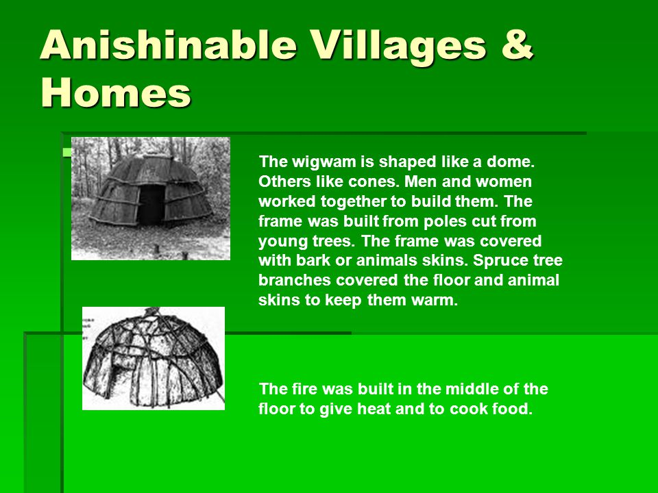Anishinable Villages & Homes  The wigwam is shaped like a dome. Others like cones. Men and women worked together to build them. The frame was built f