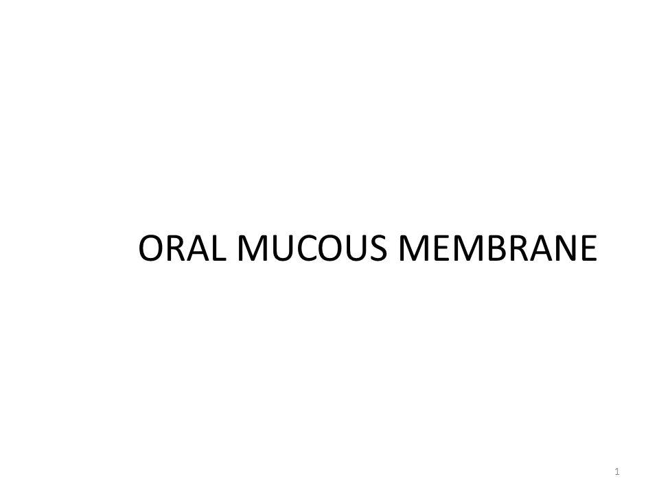 ORAL MUCOUS MEMBRANE 1