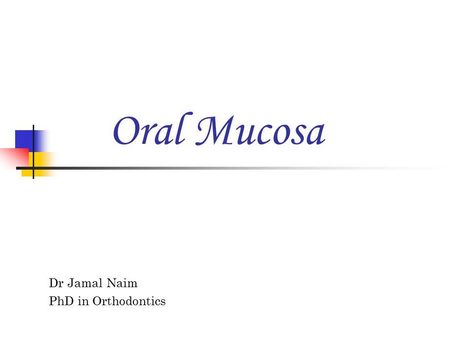 Dr Jamal Naim PhD in Orthodontics Oral Mucosa