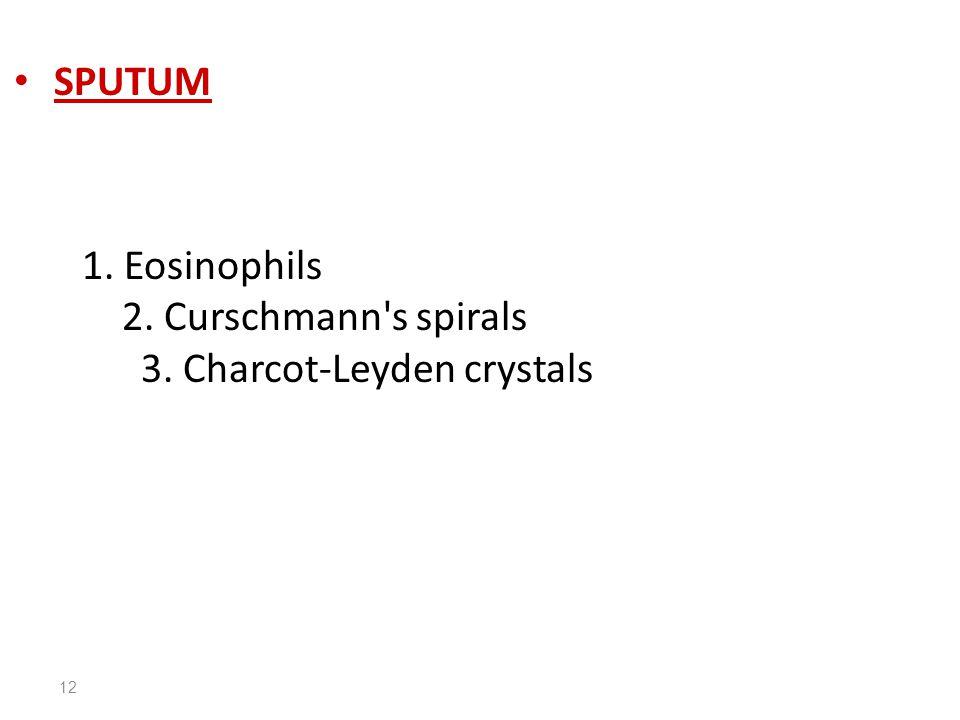12 SPUTUM 1. Eosinophils 2. Curschmann s spirals 3. Charcot-Leyden crystals
