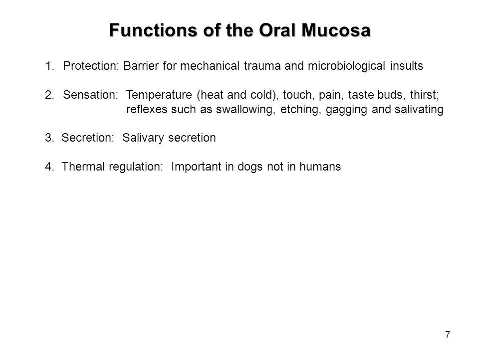 18 Fordyce's Spots Pale yellow spots Normal variation Lips, buccal mucosa, alveolar mucosa and tonsillar pillar
