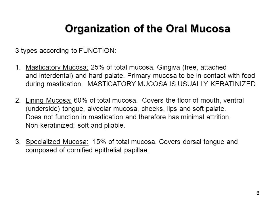 8 Organization of the Oral Mucosa 3 types according to FUNCTION: 1.Masticatory Mucosa: 25% of total mucosa. Gingiva (free, attached and interdental) a