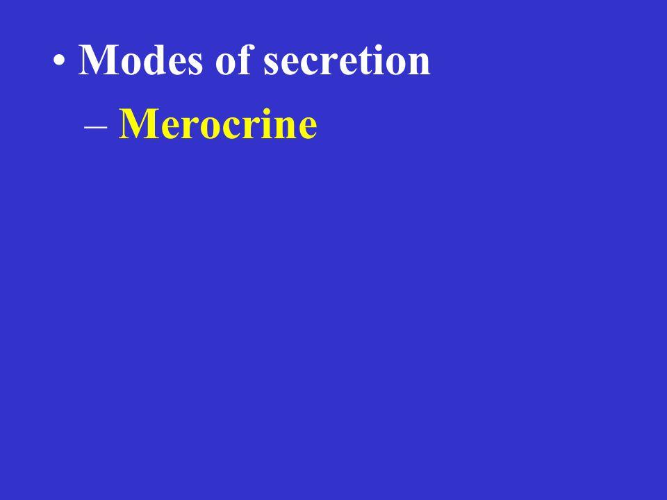 – Merocrine