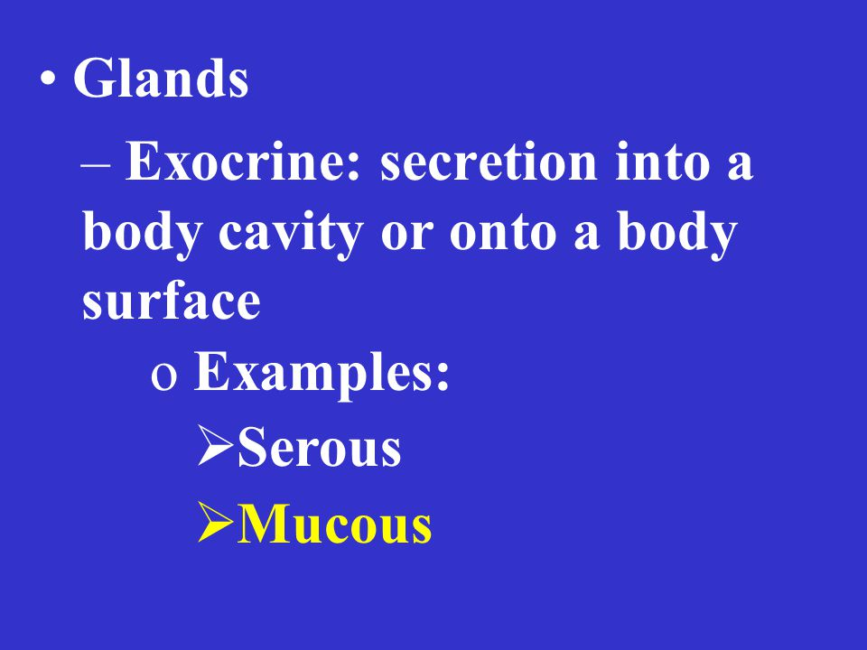 Glands – Exocrine: secretion into a body cavity or onto a body surface o Examples:  Serous  Mucous