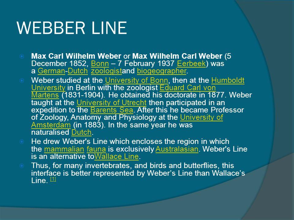 WEBBER LINE  Max Carl Wilhelm Weber or Max Wilhelm Carl Weber (5 December 1852, Bonn – 7 February 1937 Eerbeek) was a German-Dutch zoologistand bioge