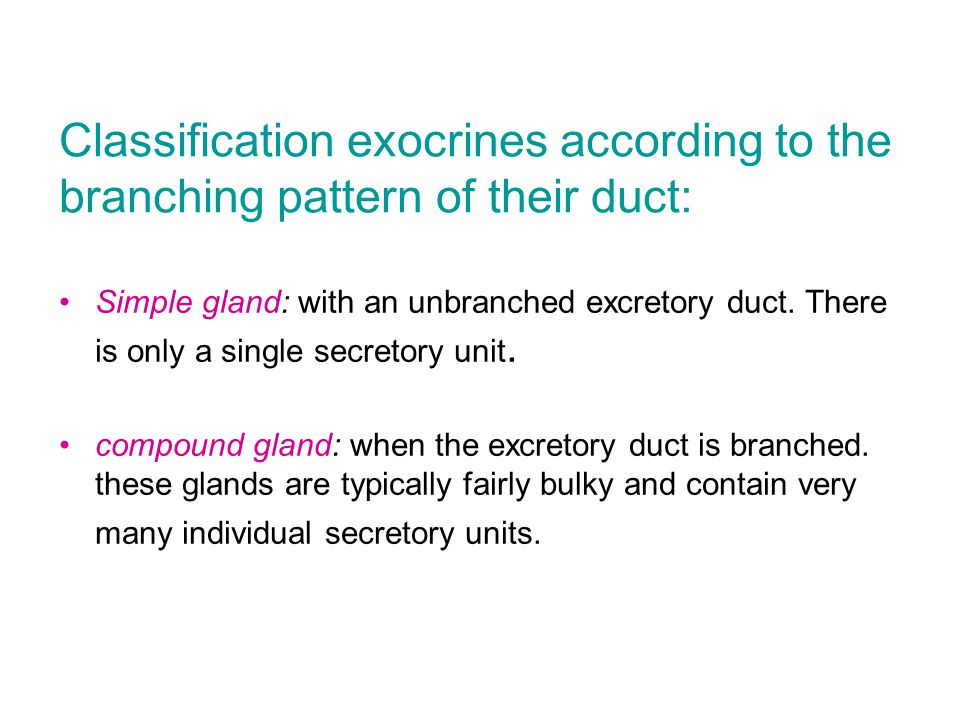 Classification exocrines according to the branching pattern of their duct: Simple gland: with an unbranched excretory duct.