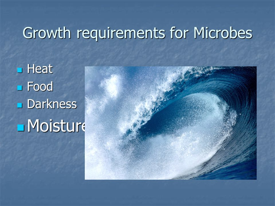 Growth requirements for Microbes Heat Heat Food Food Darkness Darkness