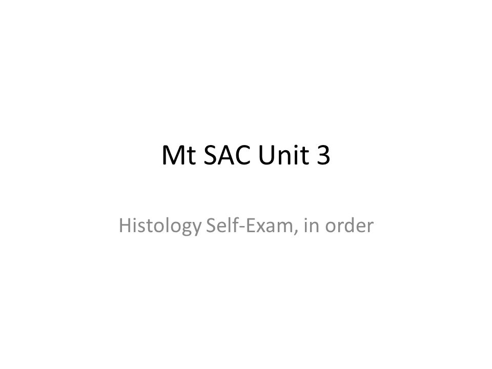 Mt SAC Unit 3 Histology Self-Exam, in order