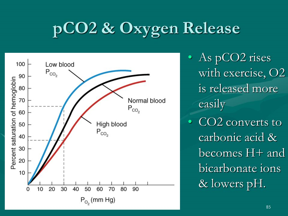 85 pCO2 & Oxygen Release As pCO2 rises with exercise, O2 is released more easilyAs pCO2 rises with exercise, O2 is released more easily CO2 converts t