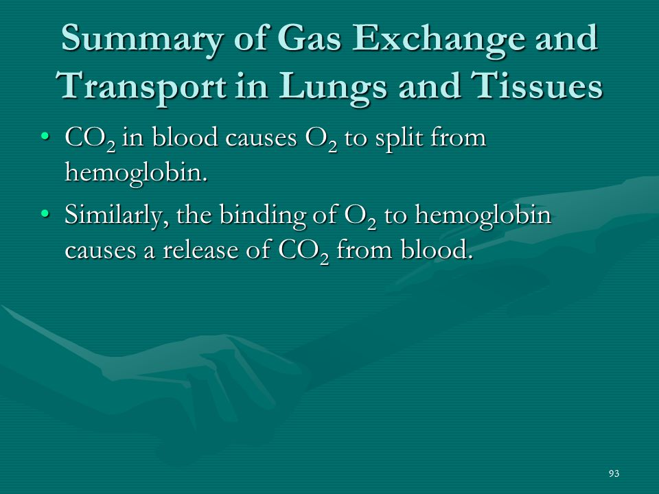 93 Summary of Gas Exchange and Transport in Lungs and Tissues CO 2 in blood causes O 2 to split from hemoglobin.CO 2 in blood causes O 2 to split from