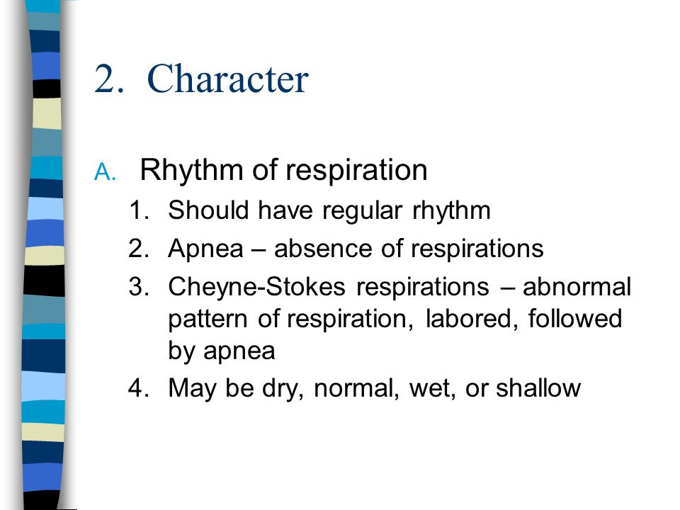 2. Character A. Rhythm of respiration 1.Should have regular rhythm 2.Apnea – absence of respirations 3.Cheyne-Stokes respirations – abnormal pattern o
