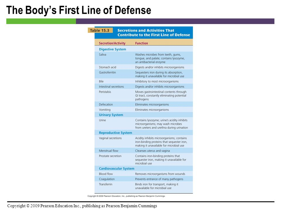 Copyright © 2009 Pearson Education Inc., publishing as Pearson Benjamin Cummings The Body's First Line of Defense [INSERT TABLE: 15.3]