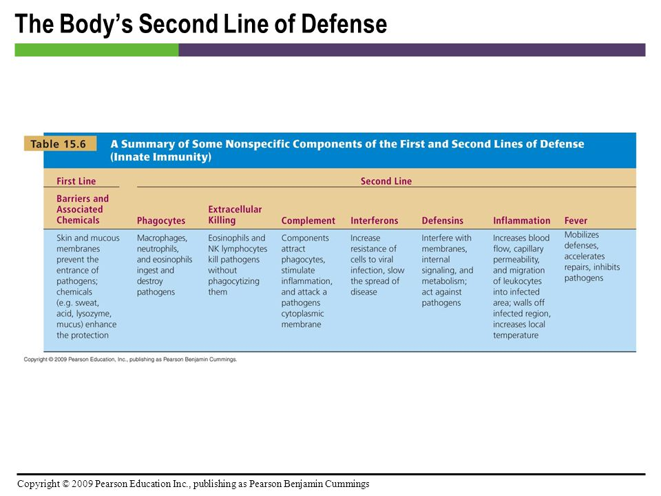 Copyright © 2009 Pearson Education Inc., publishing as Pearson Benjamin Cummings The Body's Second Line of Defense [INSERT TABLE: 15.6]