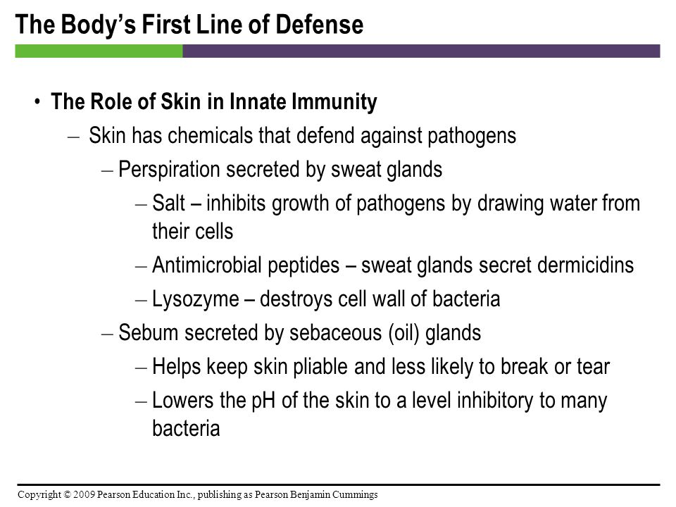 Copyright © 2009 Pearson Education Inc., publishing as Pearson Benjamin Cummings The Body's Second Line of Defense Defense Components of Blood – Plasma – Plasma is mostly water containing electrolytes, dissolved gases, nutrients, and proteins – When the clotting factors, a group of plasma proteins, are removed from plasma, the remaining fluid is called serum – Includes iron-binding compounds – Other plasma proteins include complement proteins and antibodies