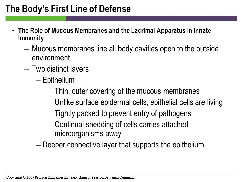 Copyright © 2009 Pearson Education Inc., publishing as Pearson Benjamin Cummings The Body's First Line of Defense The Role of Mucous Membranes and the