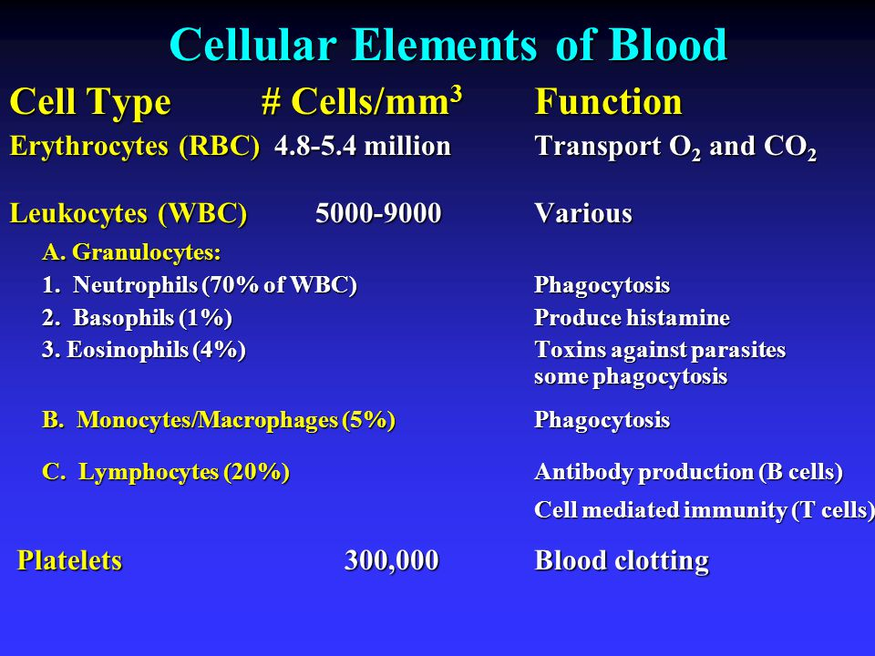 Cellular Elements of Blood Cell Type # Cells/mm 3 Function Erythrocytes (RBC) 4.8-5.4 millionTransport O 2 and CO 2 Leukocytes (WBC) 5000-9000Various A.