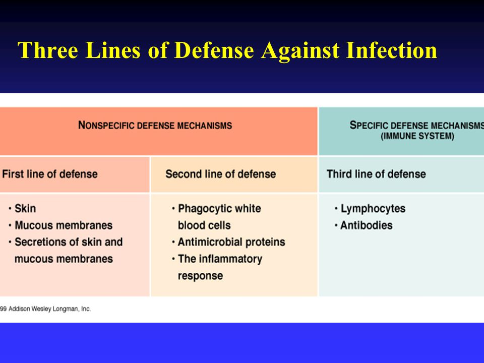 Three Lines of Defense Against Infection
