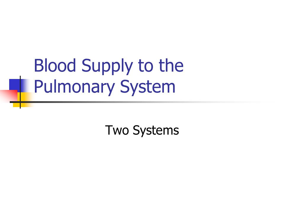 Blood Supply to the Pulmonary System Two Systems