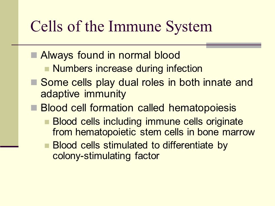 Cells of the Immune System Always found in normal blood Numbers increase during infection Some cells play dual roles in both innate and adaptive immun