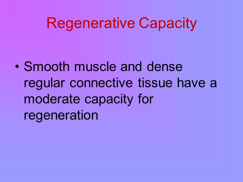 Regenerative Capacity Smooth muscle and dense regular connective tissue have a moderate capacity for regeneration
