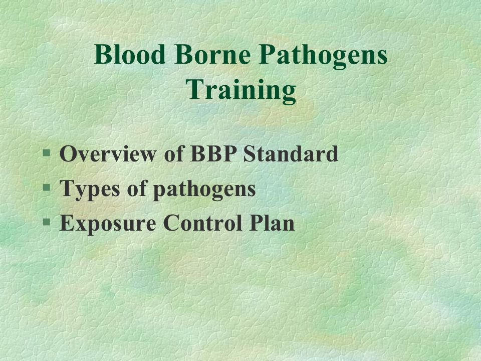 §Overview of BBP Standard §Types of pathogens §Exposure Control Plan
