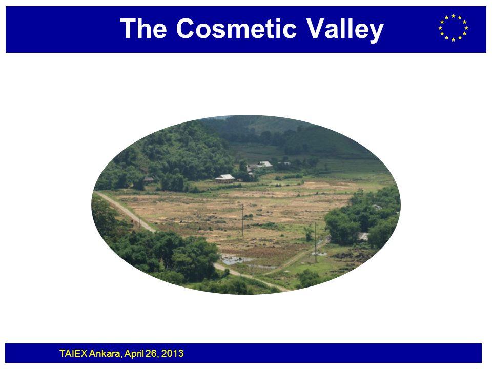 TAIEX Ankara, April 26, 2013 The Cosmetic Valley Medicinal Product Massive