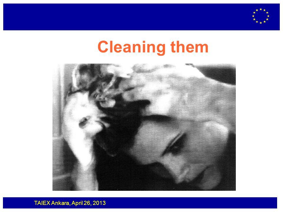 TAIEX Ankara, April 26, 2013 Cleaning them