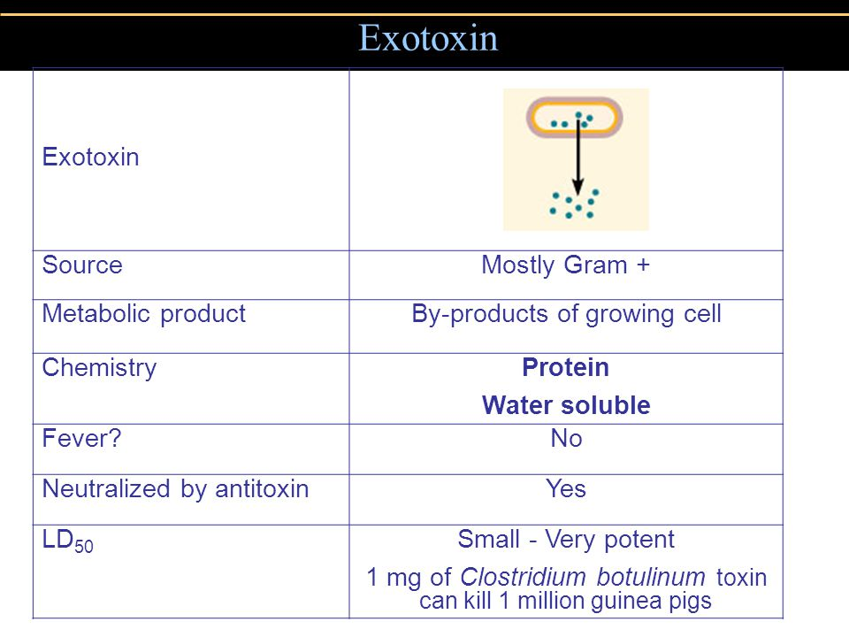 Exotoxin SourceMostly Gram + Metabolic productBy-products of growing cell ChemistryProtein Water soluble Fever?No Neutralized by antitoxinYes LD 50 Sm