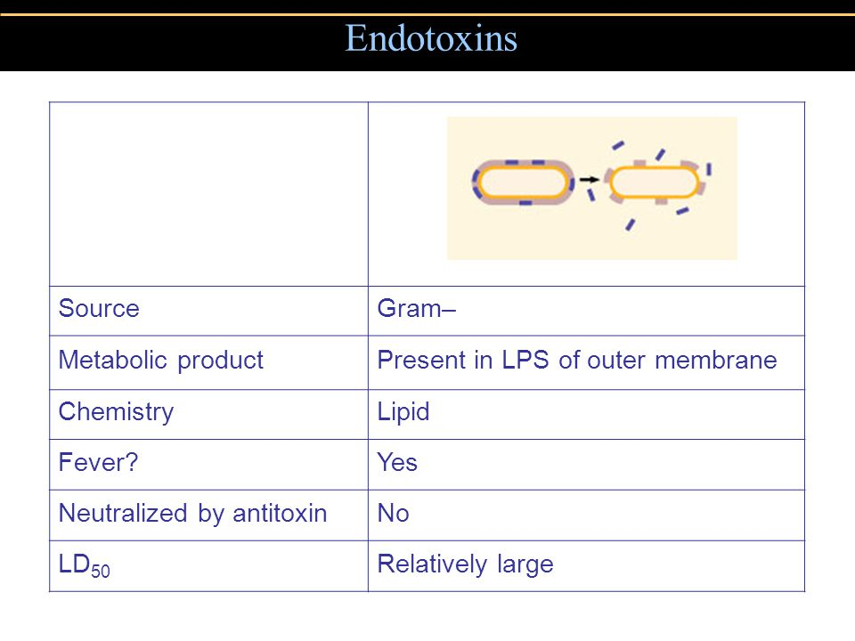 Endotoxins SourceGram– Metabolic productPresent in LPS of outer membrane ChemistryLipid Fever?Yes Neutralized by antitoxinNo LD 50 Relatively large
