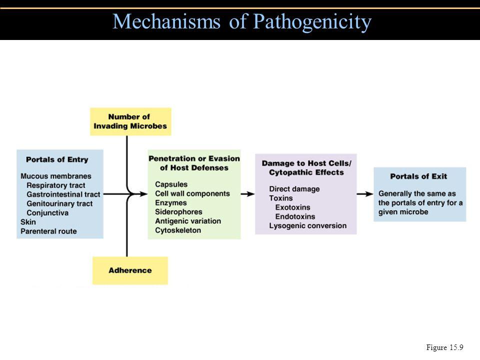 Mechanisms of Pathogenicity Figure 15.9