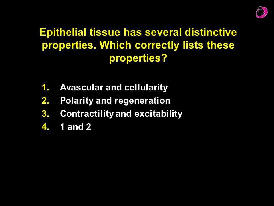 Epithelial tissue has several distinctive properties. Which correctly lists these properties? 1.Avascular and cellularity 2.Polarity and regeneration