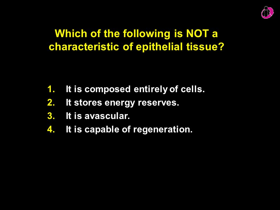 Which of the following is NOT a characteristic of epithelial tissue? 1.It is composed entirely of cells. 2.It stores energy reserves. 3.It is avascula