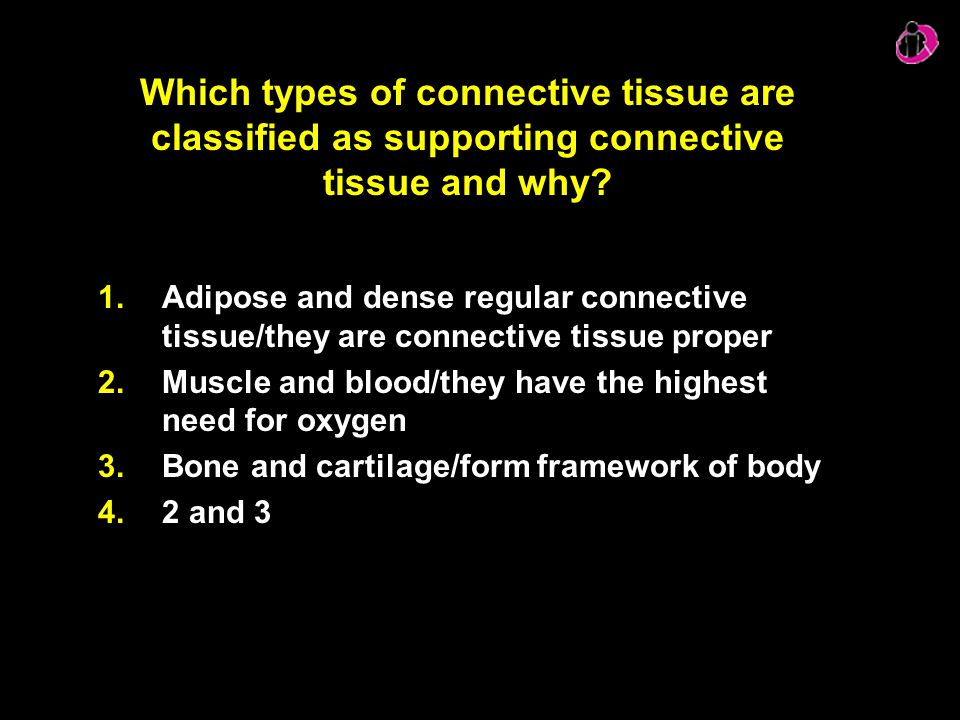 Which types of connective tissue are classified as supporting connective tissue and why? 1.Adipose and dense regular connective tissue/they are connec