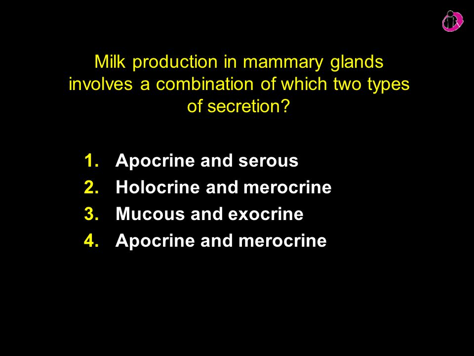 Milk production in mammary glands involves a combination of which two types of secretion? 1.Apocrine and serous 2.Holocrine and merocrine 3.Mucous and