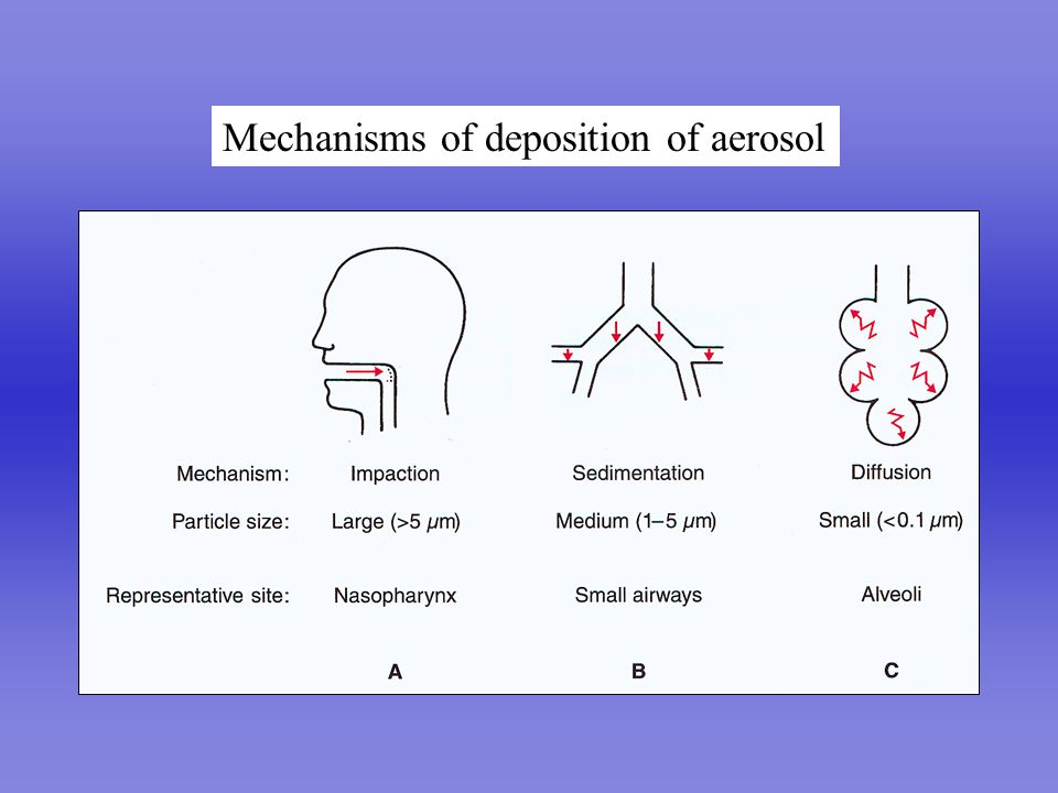 Perfect Lung Mechanisms of deposition of aerosol