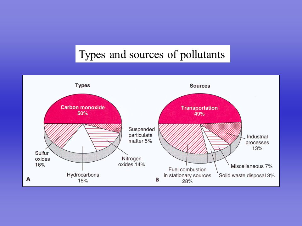 Perfect Lung Types and sources of pollutants