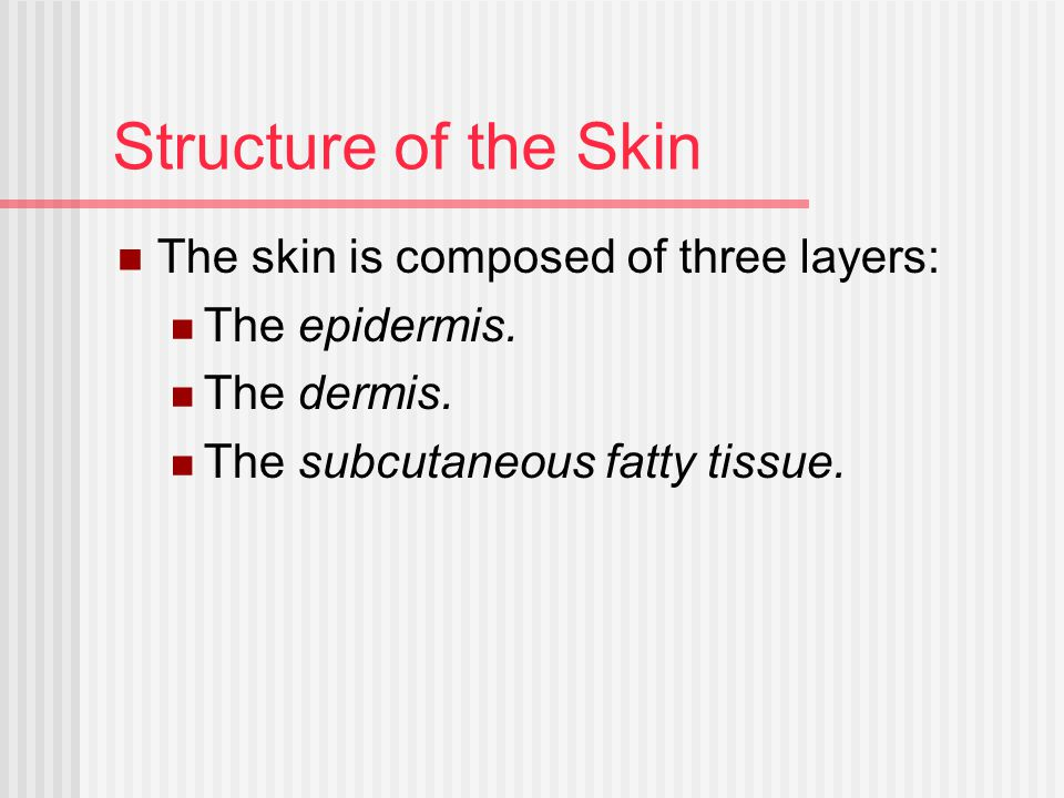 Structure of the Skin The skin is composed of three layers: The epidermis. The dermis. The subcutaneous fatty tissue.