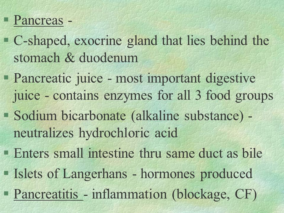 §Pancreas - §C-shaped, exocrine gland that lies behind the stomach & duodenum §Pancreatic juice - most important digestive juice - contains enzymes fo