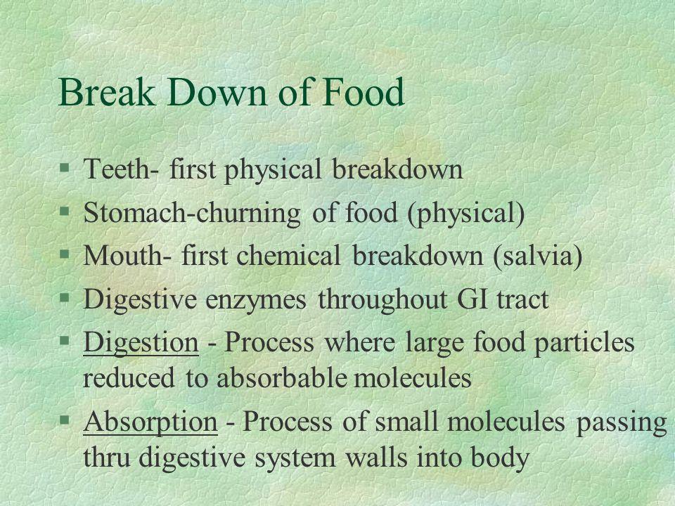 Break Down of Food §Teeth- first physical breakdown §Stomach-churning of food (physical) §Mouth- first chemical breakdown (salvia) §Digestive enzymes