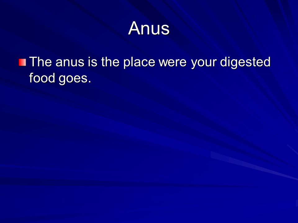 Anus The anus is the place were your digested food goes.