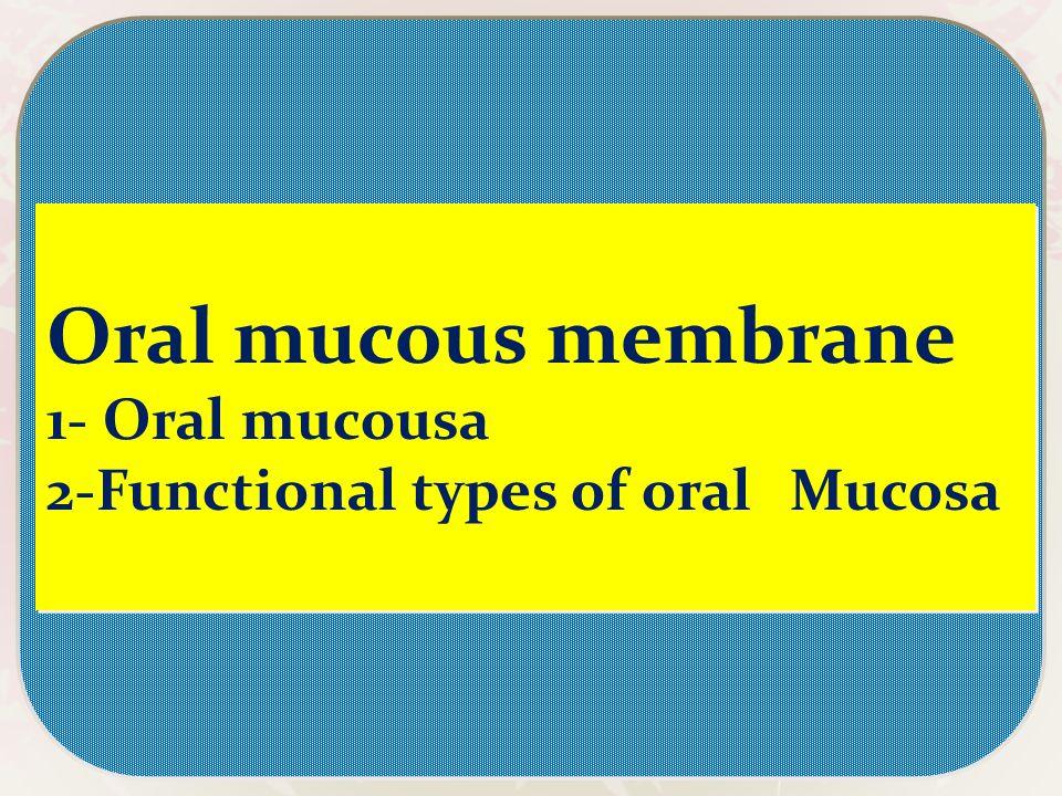 1- Oral mucousa