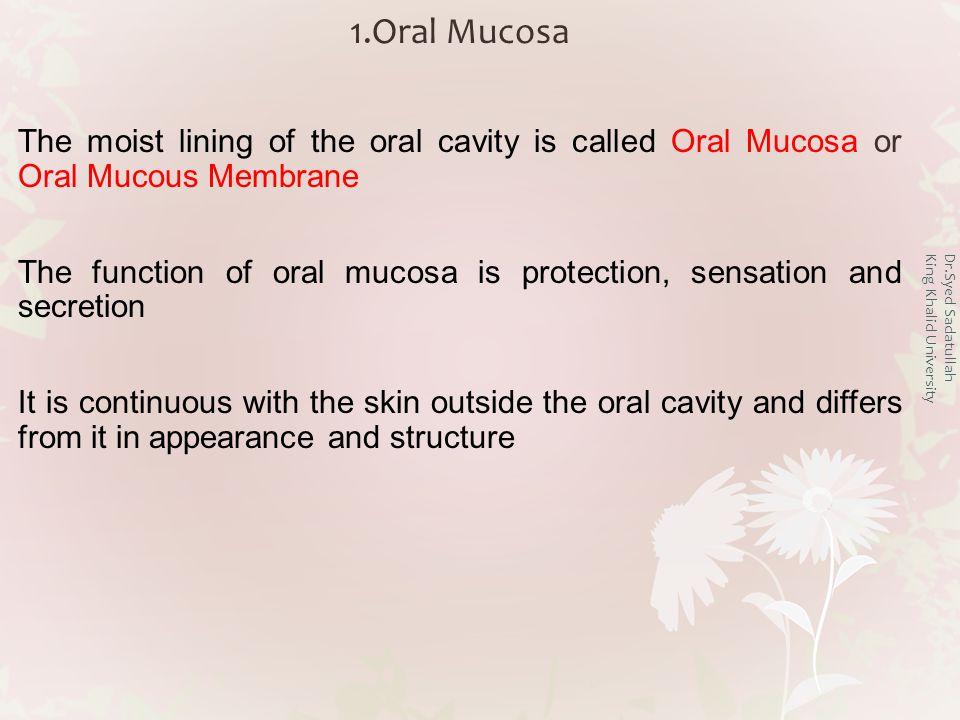 Dr.Syed Sadatullah King Khalid University Oral Mucous Membrane