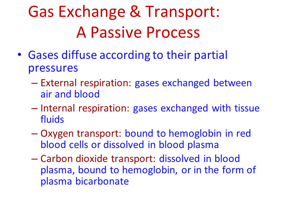 Gas Exchange & Transport: A Passive Process Gases diffuse according to their partial pressures – External respiration: gases exchanged between air and