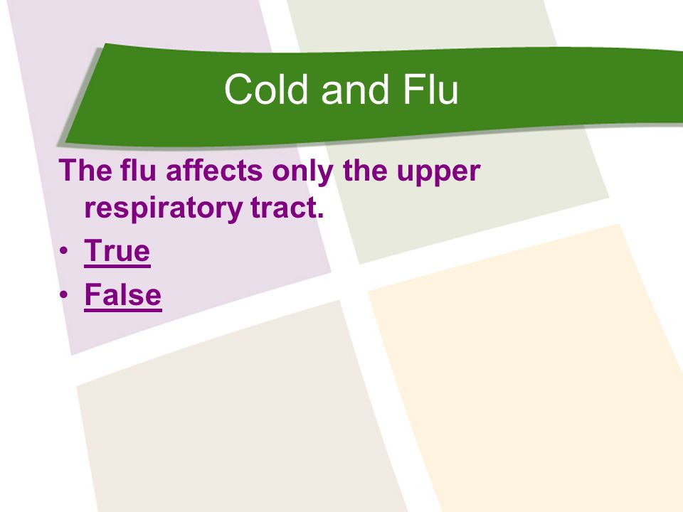 Cold and Flu The flu affects only the upper respiratory tract. True False