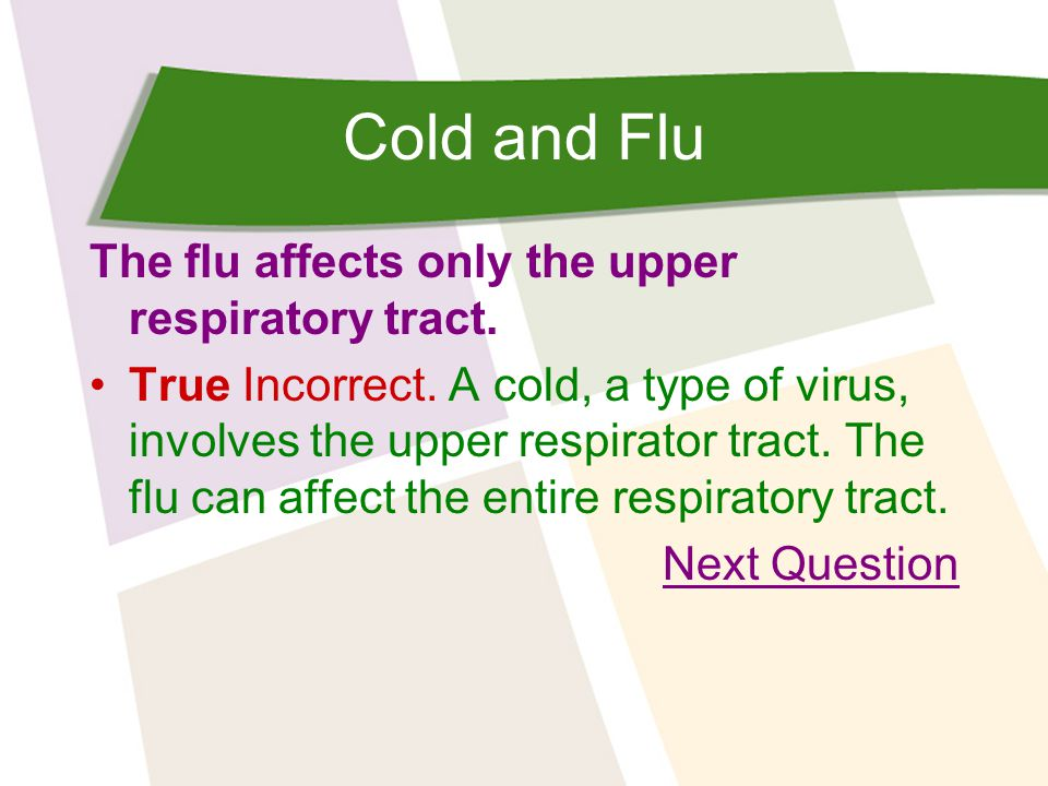 Cold and Flu What should you do to fight a cold or the flu.