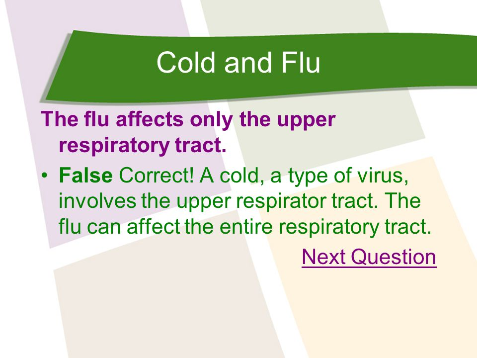 Cold and Flu What should you AVOID doing if you want to prevent the spread of colds and the flu.