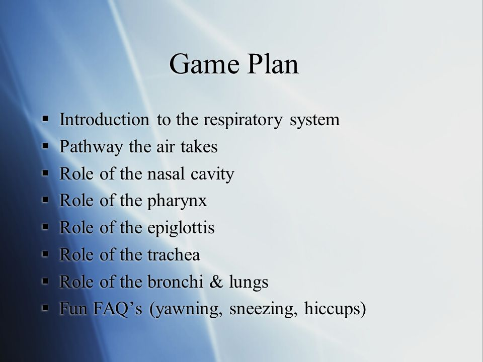 Game Plan  Introduction to the respiratory system  Pathway the air takes  Role of the nasal cavity  Role of the pharynx  Role of the epiglottis  Role of the trachea  Role of the bronchi & lungs  Fun FAQ's (yawning, sneezing, hiccups)  Introduction to the respiratory system  Pathway the air takes  Role of the nasal cavity  Role of the pharynx  Role of the epiglottis  Role of the trachea  Role of the bronchi & lungs  Fun FAQ's (yawning, sneezing, hiccups)