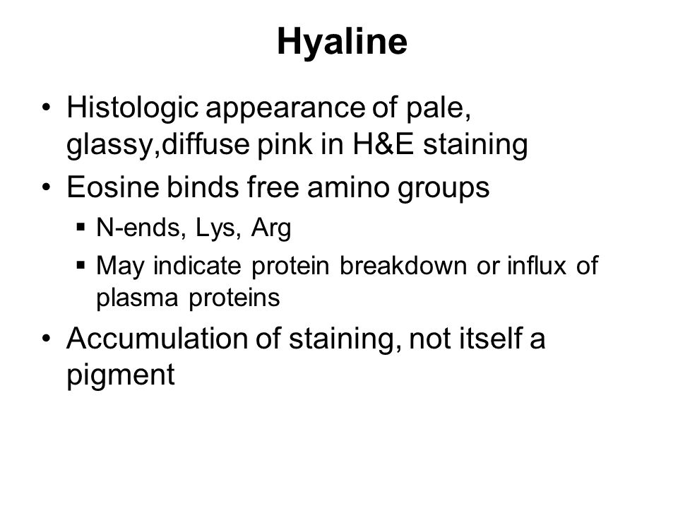Hyaline Histologic appearance of pale, glassy,diffuse pink in H&E staining Eosine binds free amino groups  N-ends, Lys, Arg  May indicate protein br